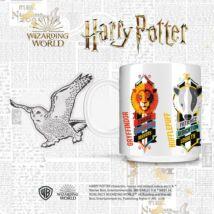 Harry Potter bögre díszdobozban - Házak