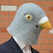 Galamb madár halloween, farsangi maszk