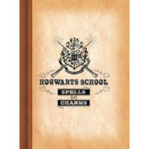 Harry Potter - Hogwarts School, Roxfort vonalas füzet - A5